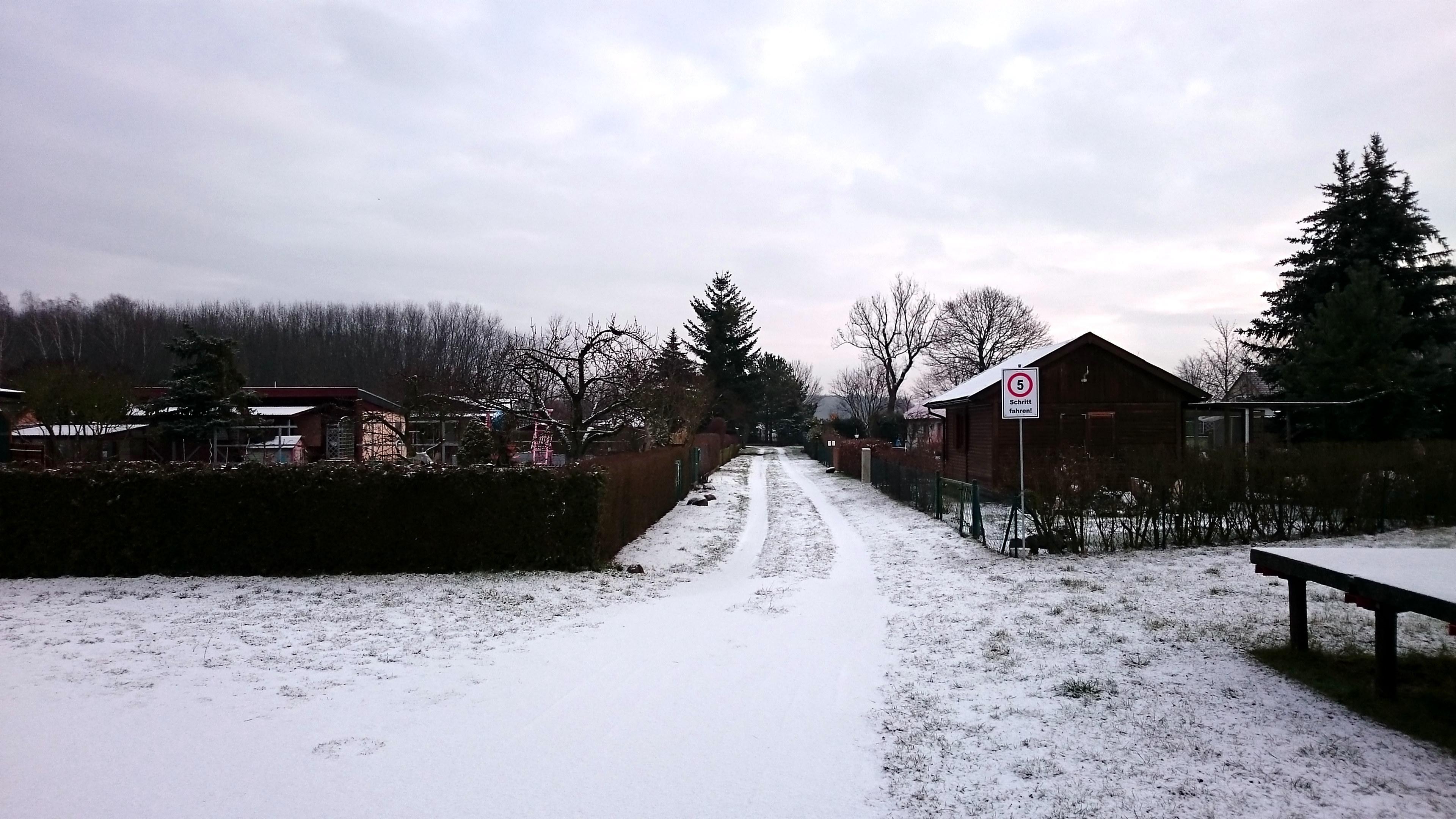 01 104 Verein